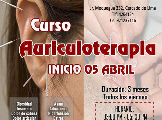 CURSO DE AURICULOTERAPIA