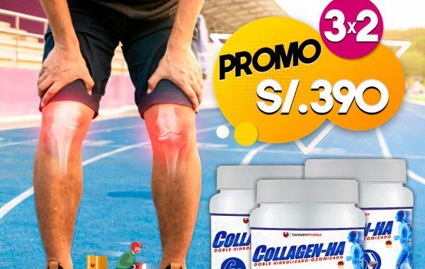 Collagen HA